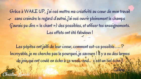WAKE UP | Christine Lewicki | Coaching | Développement personnel