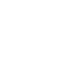 Athena Illustration